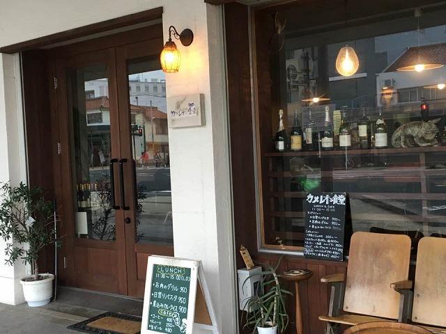 【敦賀市】駅前に佇む「カメレオン食堂」その名の通り、店内にはカメレオンが…