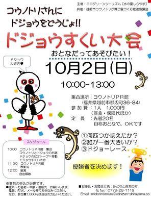 福井でドジョウすくい!コウノトリの幸せスポットで思いっきり遊ぼう!【越前市】