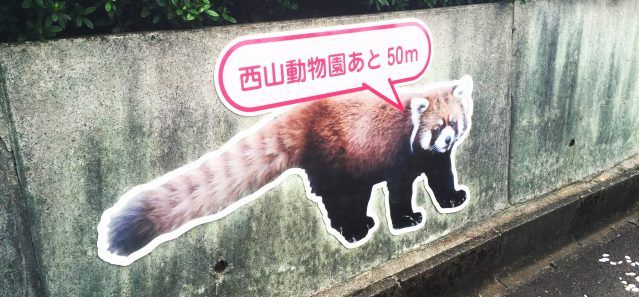 dear fukui ディア 福井 ふくい 西山動物園
