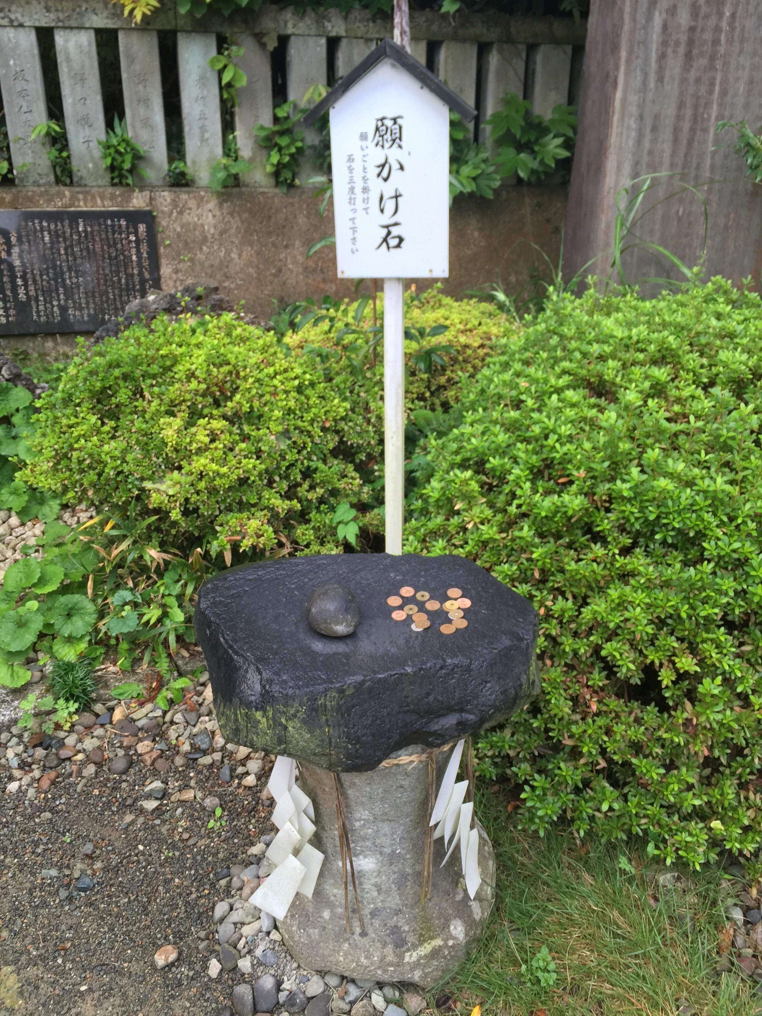 dear fukui ディア ふくい 福井 足羽山公園