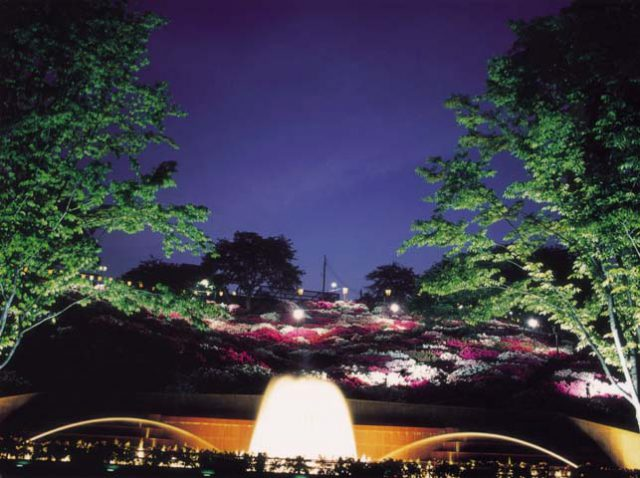 dear fukui ディア ふくい 福井 西山公園