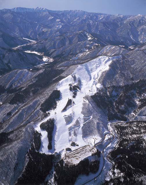 和泉スキー場の画像