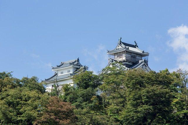 福井越前大野城天空の城の画像
