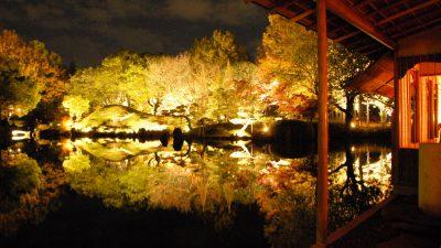 養浩館庭園の四季を楽しもう!海外からも高評価で行かなきゃ損!【福井市・インスタあり】