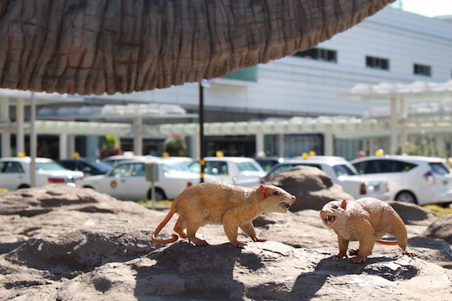 福井駅恐竜の画像