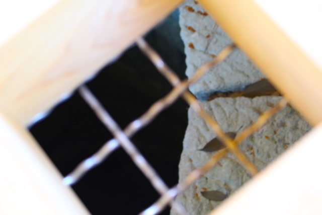 福井城跡県庁歴史福の井の画像