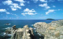 海から東尋坊を見てみよう!遊覧船から不思議な岩や雄島も観察できます【坂井市】