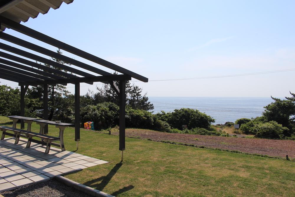 ワタリグラスから見える越前海岸