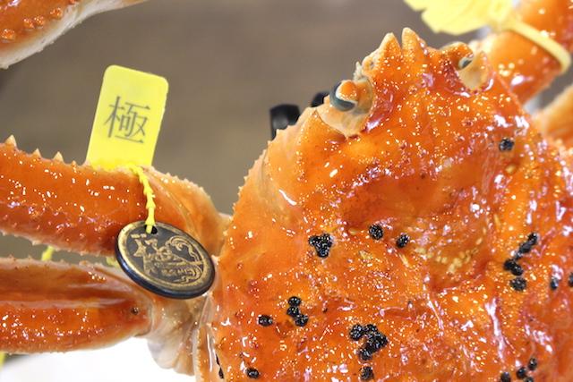 福井越前がに極漁港出漁式の画像