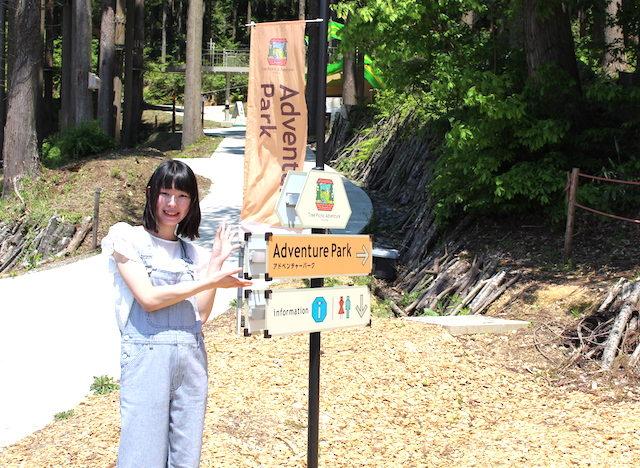 福井池田ツリーピクニックアドベンチャーディスカバリーコースの画像