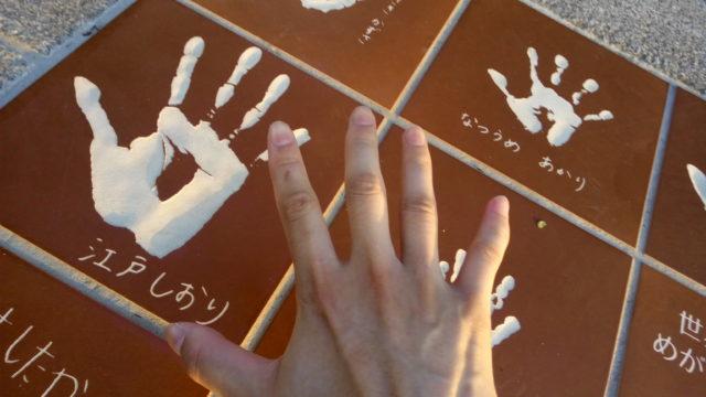 福井鯖江クラウドファンディングFAAVOメガネーランドの画像