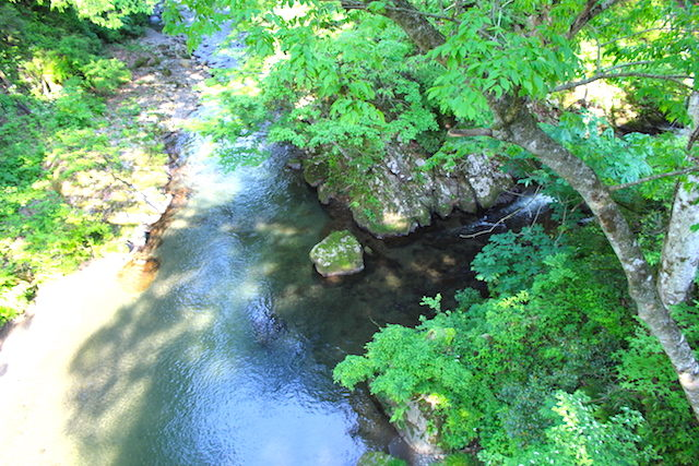 福井池田パワースポットかずら橋の画像