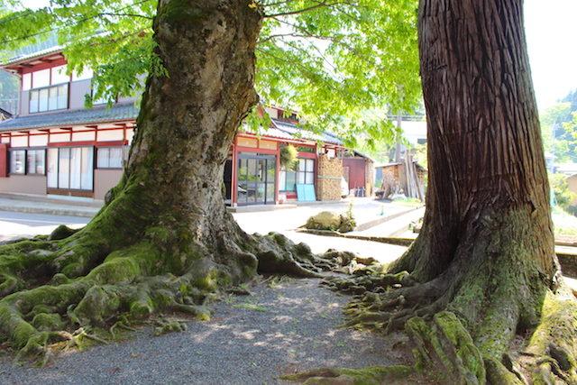 福井池田パワースポット白山神社の画像