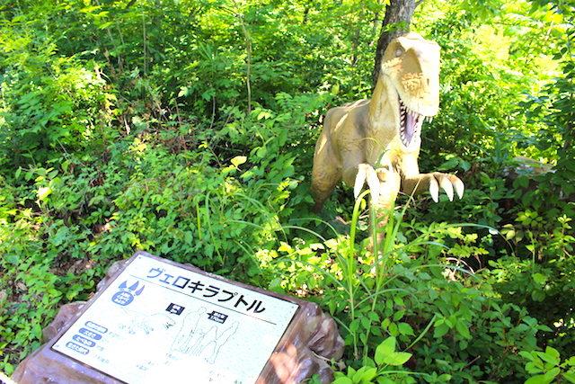 福井勝山恐竜博物館ディノパークの画像