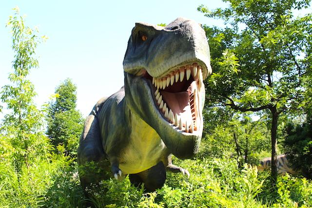 実物大の恐竜に会える!ディノパークで恐竜時代にタイムスリップ【勝山市】