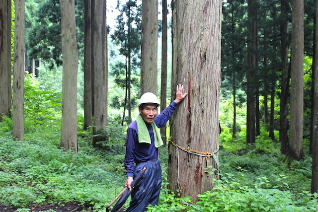 福井池田魚見川源流調査農村体験の画像