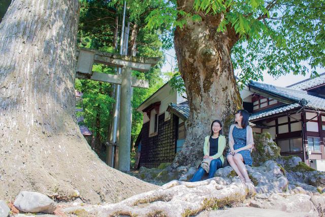 福井池田白山神社の画像