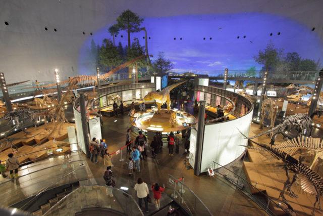 世界三大恐竜博物館!国内最大級の恐竜博物館が数倍楽しくなる!見所徹底解説【勝山市】