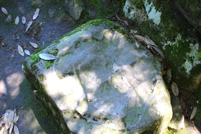 勝山観光歴史平泉寺白山神社の画像