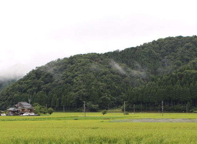 福井池田農村合宿の画像