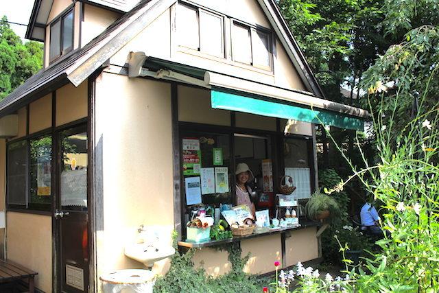 福井勝山平泉寺グルメソフトクリームの画像