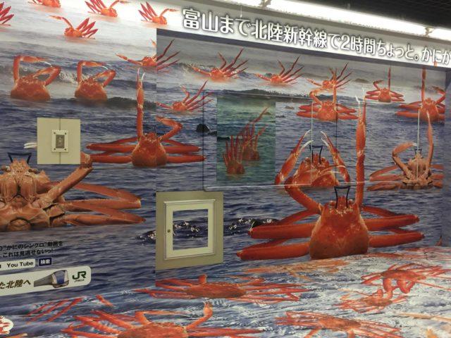 福井東京駅北陸かに越前ガニの画像