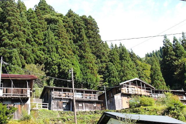福井勝山フクジュ荘の画像