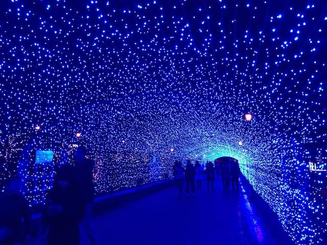 福井クリスマス敦賀港イルミネーションミライエの画像