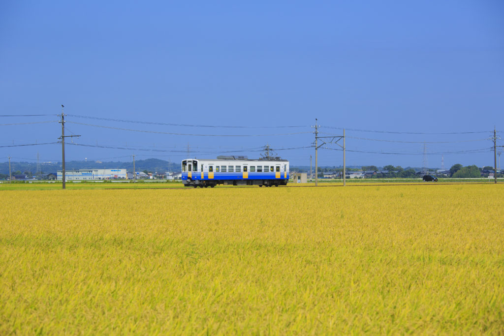 「えちてつ物語~わたし、故郷に帰ってきました。〜」 公開中!福井のロケ地全部解説します!
