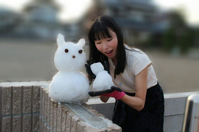 福井勝山ふるさと納税雪恐竜