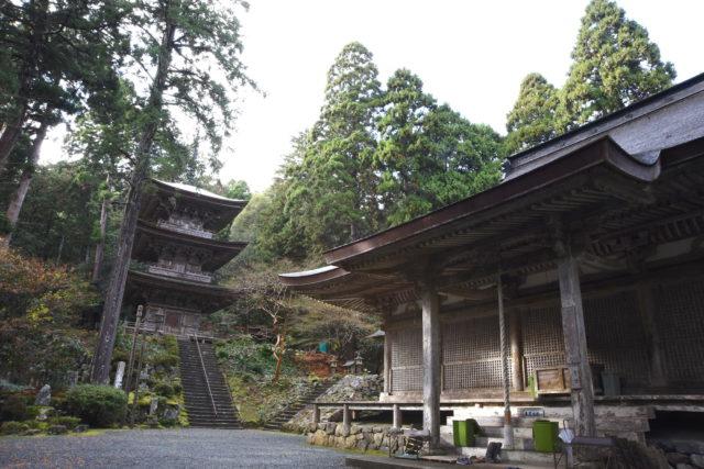建造物では福井県内唯一の国宝!明通寺とは【小浜市】