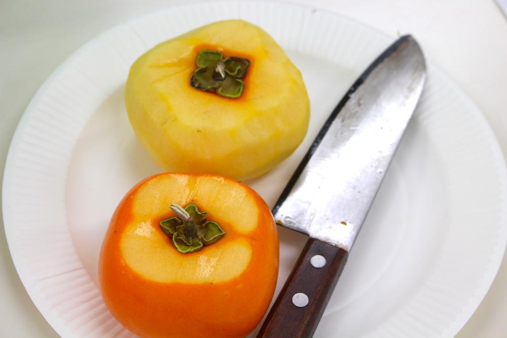 越前柿干し柿あんぽ干し柿あわら福井