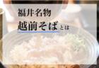 越前そばとは?福井県の定番グルメ!その特徴や食べ方は?