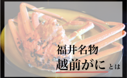 冬の味覚の王者『越前がに』とは?食べられる旅館・飲食店もご紹介!